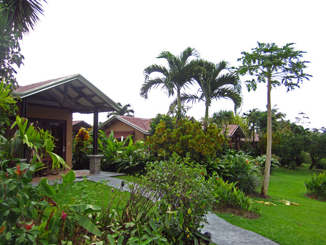 Hotel Arenal Springs Resort