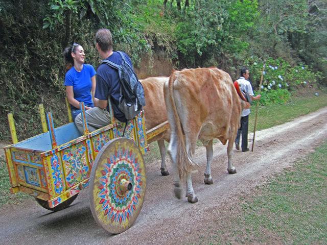 Tours in Monteverde Costa Rica