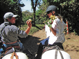 Horse Riding with Horse Trek Monteverde