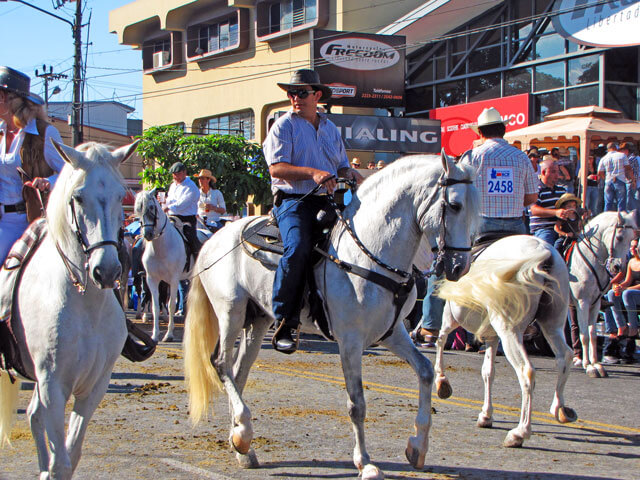 Costa Rica Horse Parades
