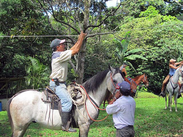 Costa Rica Horse Carrera de Cintas Event
