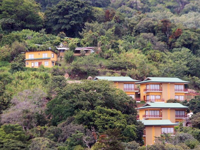 Hotel Ficus Sunset Suites Monteverde