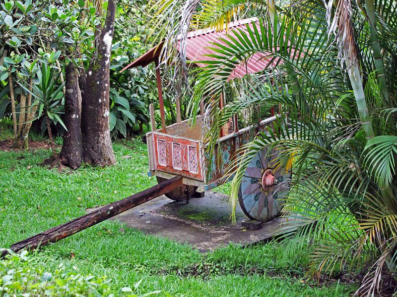 Hotel Miramontes Garden