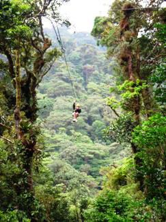 Tourism in Monteverde Costa Rica