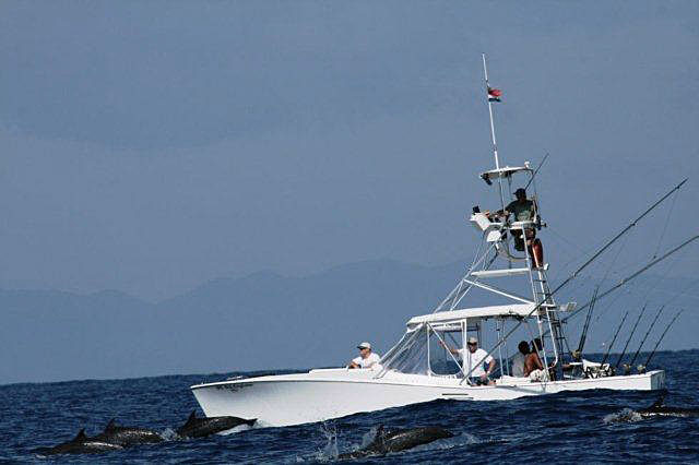 Sport Fishing Costa Rica