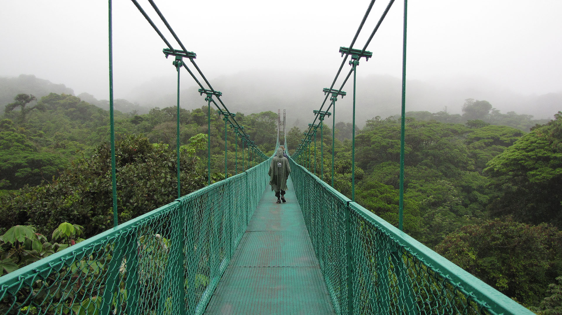 Selvatura Hanging Bridges in Monteverde