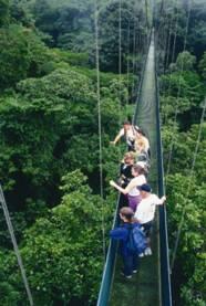 Sky Hanging Bridges in Monteverde