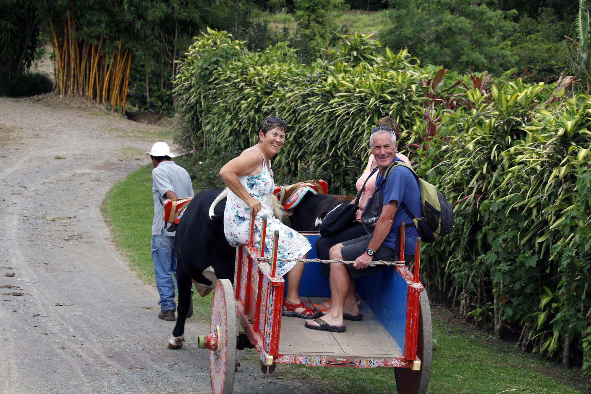 Don Juan Coffee Tour Monteverde