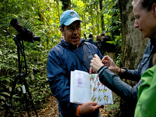 Guided Tours in the Monteverde Cloud Forest