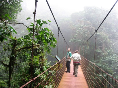 Hanging Bridge in the Monteverde Forest